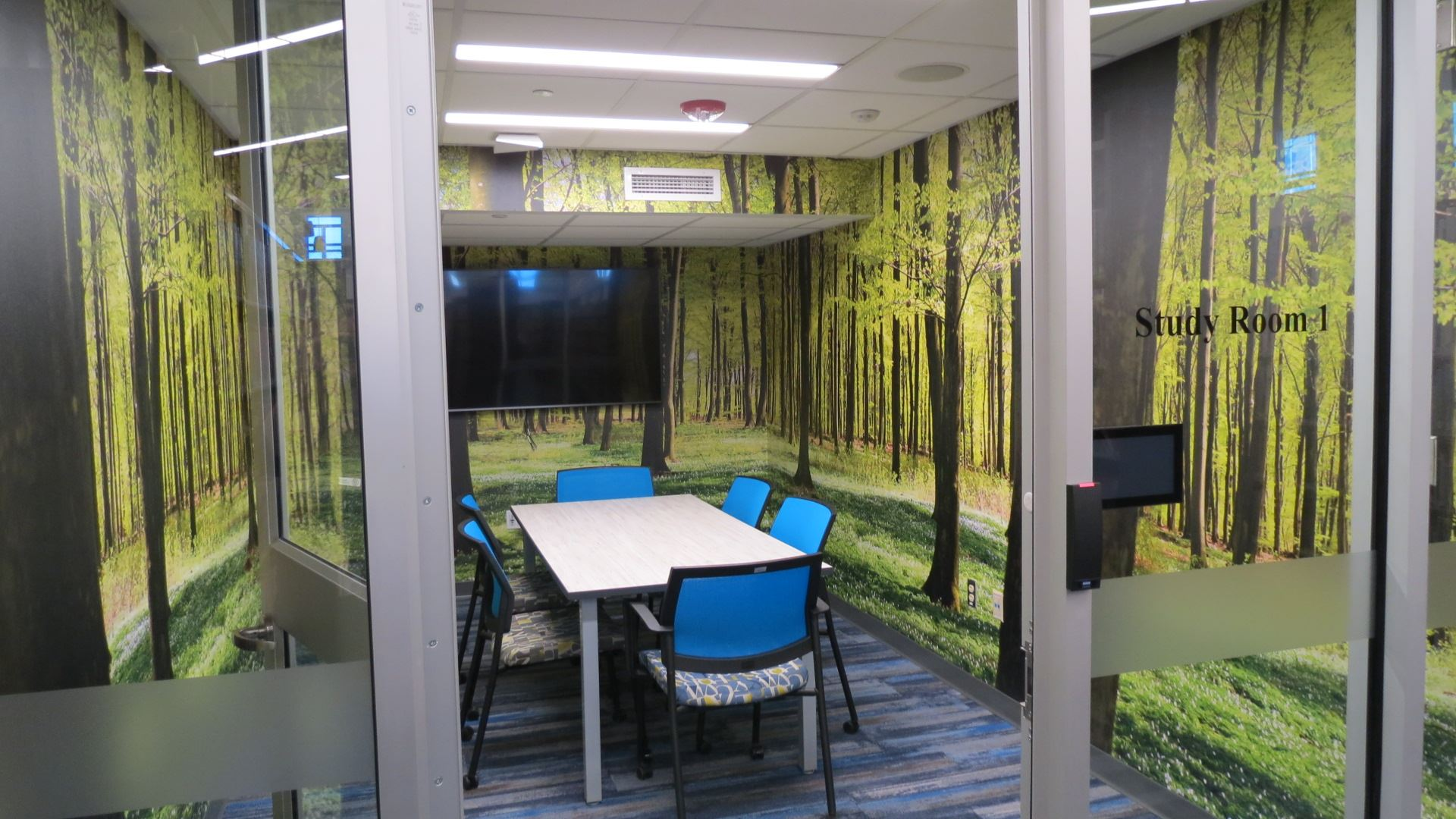 Study Room 1 - Forest Room